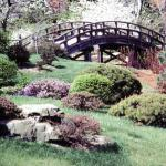 Japanese Garden Bridge. Missouri Botanical Garden.
